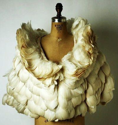 Featherjacket
